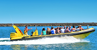 Speedboat Island Shuttle from Faro to Ilha deserta by Animaris